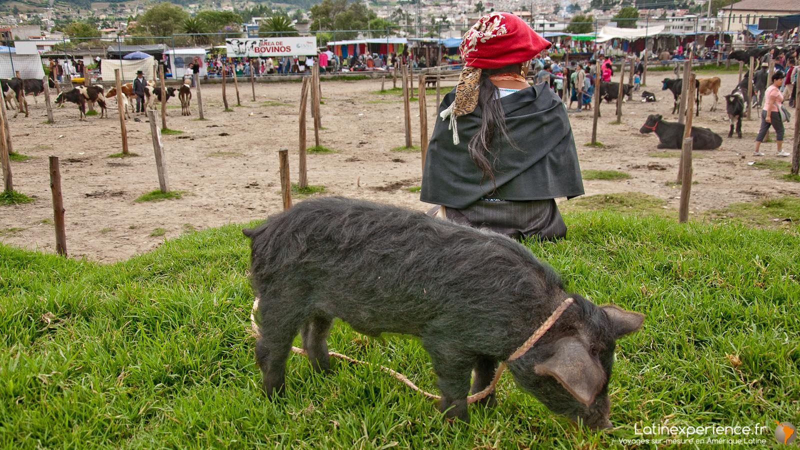 Equateur - Marché Otavalo - Latinexperience voyages
