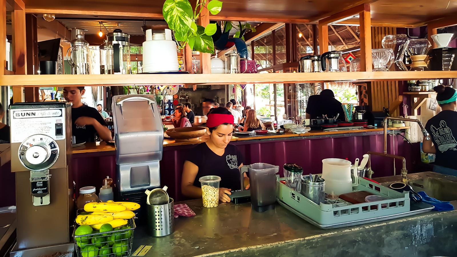 Mexique - Playa Del Carmen - Le Choucou - Latinexperience voyag