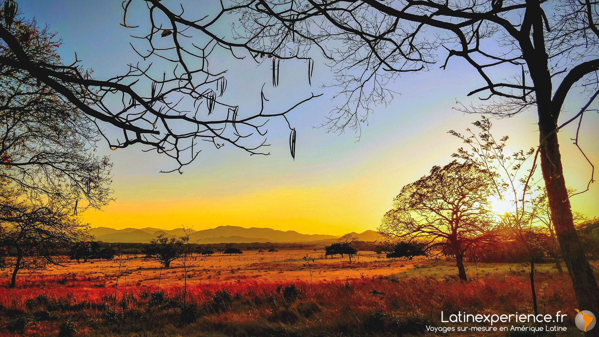 Costa Rica - Voyage de noces - prairies du Tempisque
